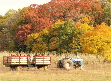Come join us for some fall fun on the farm!!